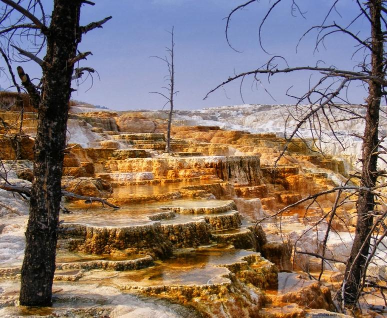 Yellowstone NP (USA)