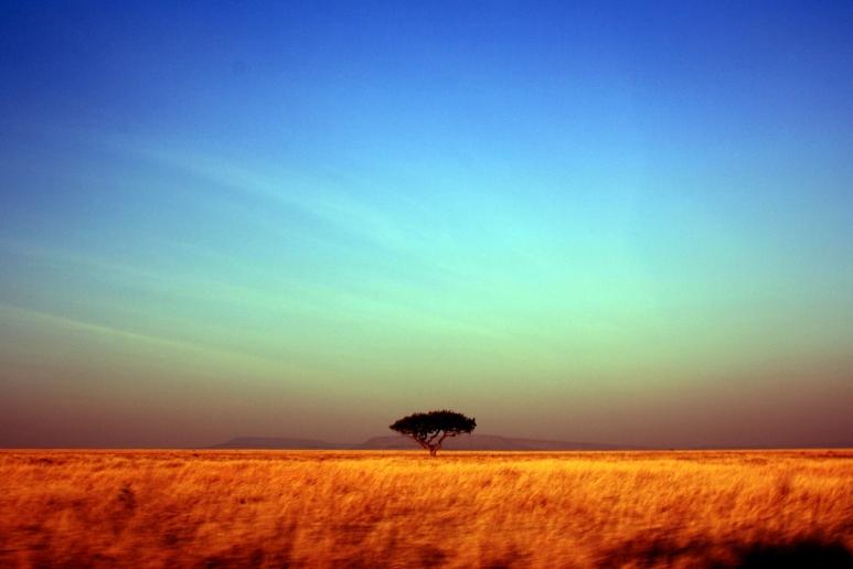 Serengeti Park (Tanzania)