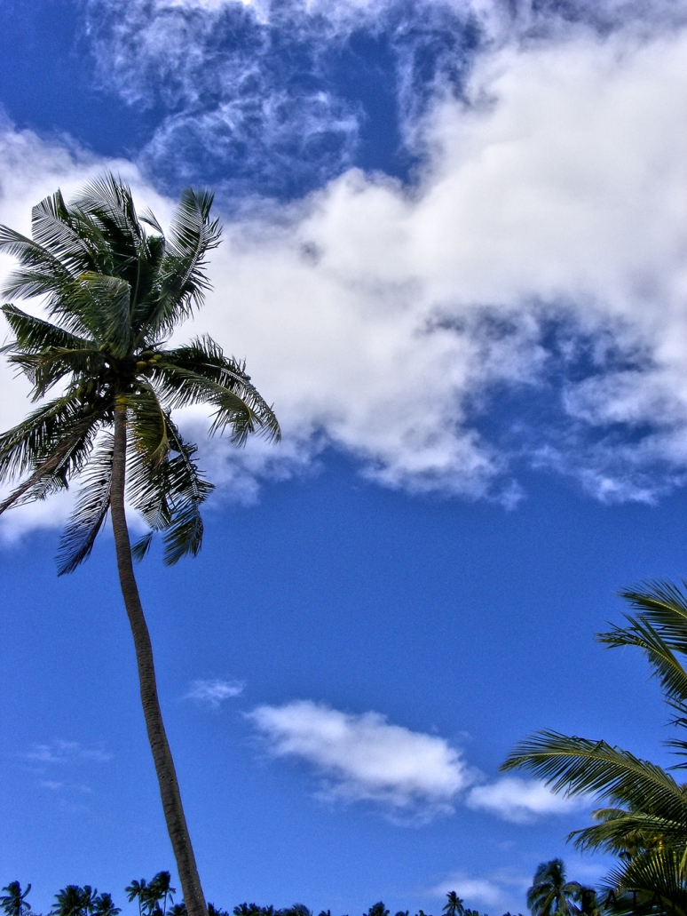 The azure sky (Fiji)